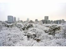 舞鶴公園の雪化粧 提供:福岡市