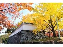 秋色に染まる福岡城址 提供:福岡市