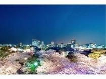 福岡城さくらまつり 提供:福岡市
