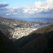 伊豆山から見た湯河原市街地