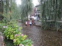 白川での川遊び