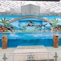 イルカ10頭ジャンプ