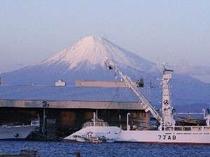 焼津港からの富士山