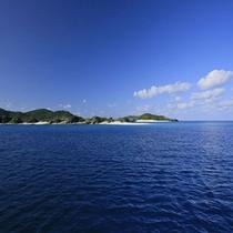 *まるで水族館のような熱帯魚の楽園がひろがります!