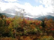 乗鞍高原、一の瀬園地の紅葉。