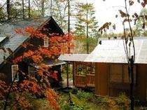 2010年10月下旬のゲストハウスと野趣風呂