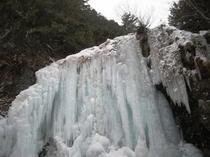 凍った善五郎の滝。