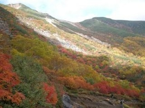 秋の乗鞍岳
