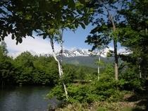 6月下旬の乗鞍岳