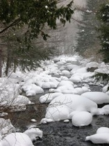 楢の木の吊り橋からの雪帽子