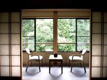 和室10畳から望む5月の新緑。目の前には4年に1度開花するフジキが望めます