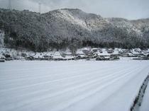 雪×かやぶきの里。辺り一面銀世界です