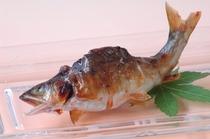 【夏料理】【天然鮎味噌焼】自家製山椒味噌でじっくりと焼き上げます
