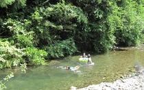 川のせせらぎがなんとも心地よく、夏なら鮎がキラキラと覗けます