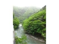 美山の代表的なビュースポット、唐戸の渓谷です