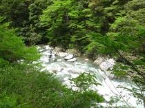 四季折々に変化を見せる狭隘の渓谷として有名な唐戸の渓谷