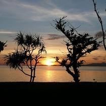*周辺景色/たかなガーデンから眺める朝日。今日も素敵な1日になりそう。