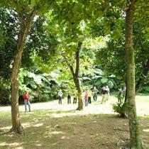 *ガーデン/施設内にも広々としたお庭があり森林浴が楽しめます。