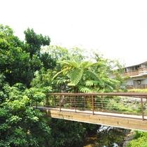 *ホテル敷地内/テラスから続く渡し橋の先には森林浴遊歩道が!