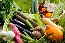 大和伝統野菜