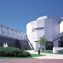 *木田金次郎美術館(車10分)/北海道、岩内の自然とともに生きた画家 木田金次郎の世界。