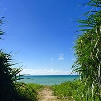 *周辺/当館のすぐ浦はエメラルドグリーンのビーチ!