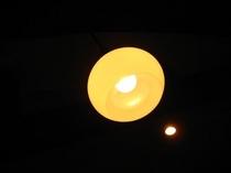 【藤】照明