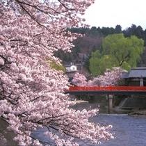 中橋(春)