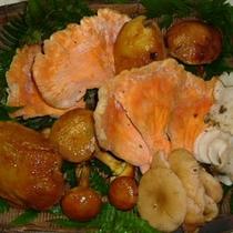 *【秋の味覚】秋はきのこ料理を中心とした旬のお料理。
