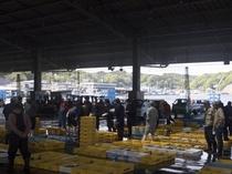 宮古漁港の様子です