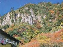 秋の一面に広がる紅葉