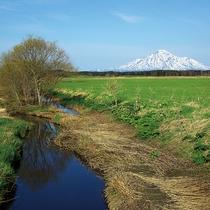 *周辺散策/北海道ならではの雄大な景色を眺めてのんびり過ごしましょう。