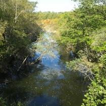 *フットパス散策/シモエベコロベツ川を脇に眺めながらのんびり散策。
