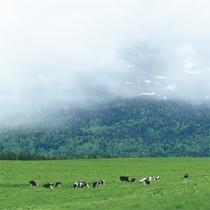 *周辺景色/こんな雄大な景色が、ここでは日常の風景!