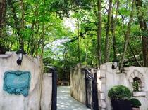 森のエントランス(玄関)