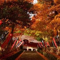 秋 鰐淵寺
