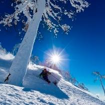 【スキー場】パウダーを滑る爽快感!