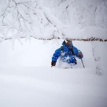 【スキー場】パウダー堪能