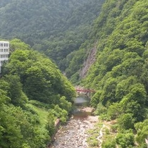 12階からの景色夏 川側