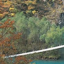 ■ 寸又峡プロムナード 寸又峡温泉街から1周約90分の道のりを楽しむ散策路です。