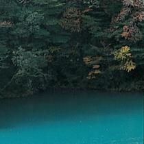 ■ 「21世紀に残したい日本の自然100選」にも選ばれた大自然を、散策してはいかがでしょうか。