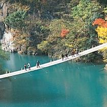■ 途中には、「夢の吊り橋」「飛龍橋」「尾崎坂展望台」など、四季折々の素晴らしさを堪能できます。