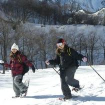 【スノーシュー(C)】冬/白銀の世界を楽しむ雪山散策!