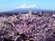2013/03/28富士山