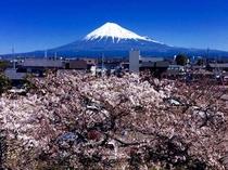 2015/03/11富士山