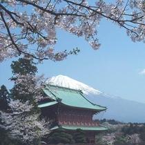 ■大石寺(お車で35分) 日蓮正宗の総本山