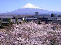2011/04/05富士山