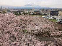 2017/04/10 今日の富士山
