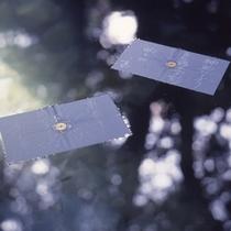 【八重垣神社】鏡の池