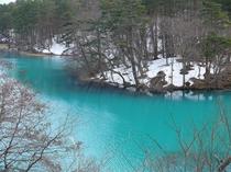 冬の五色沼